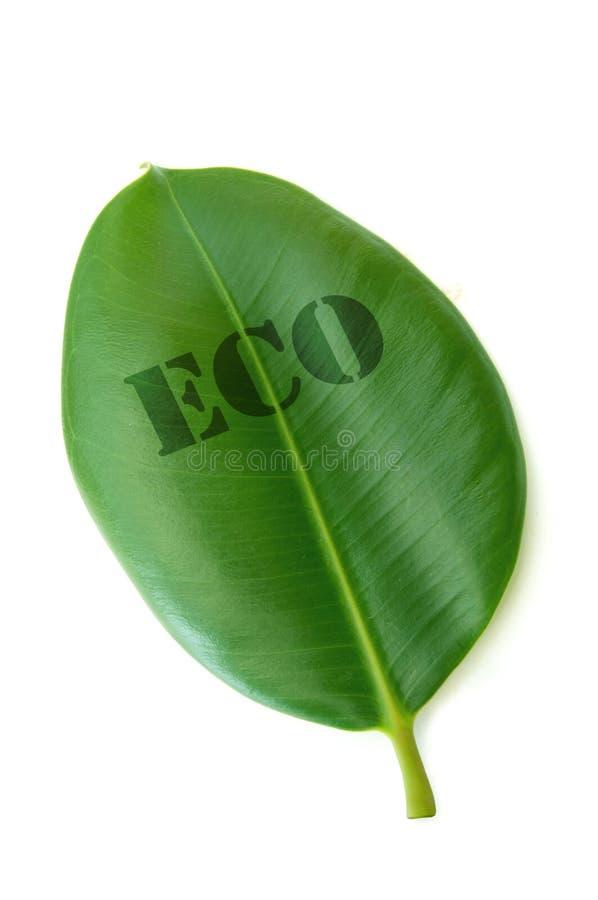 Download Eco stock afbeelding. Afbeelding bestaande uit recycling - 39101135