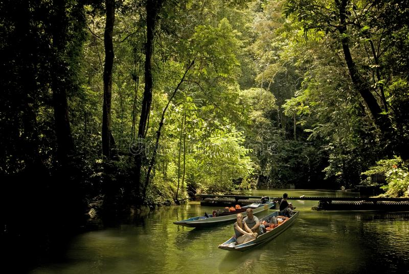 Mulu National Park royalty free stock image