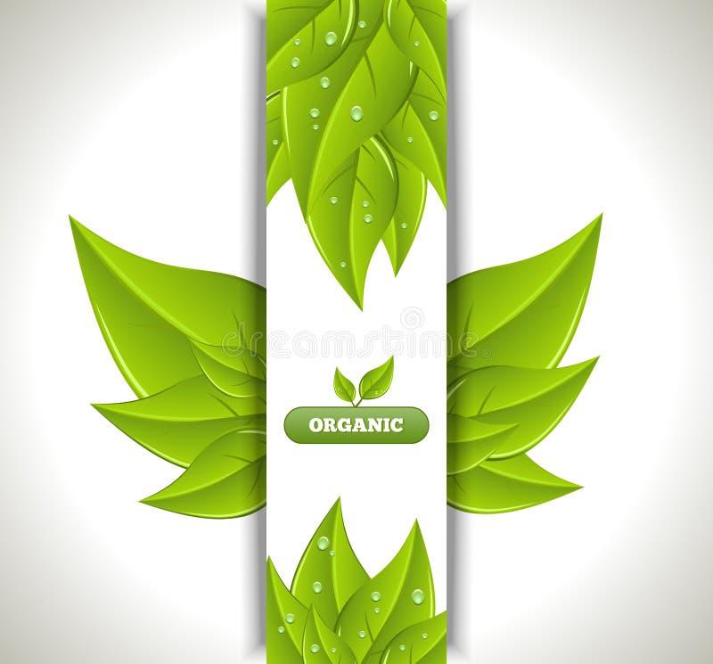 Eco baner