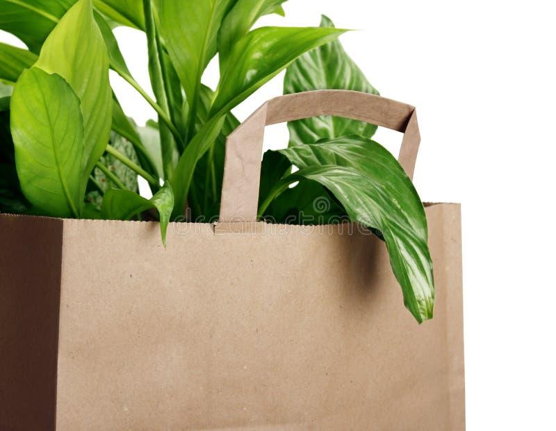 Eco Beutel stockbilder