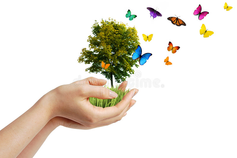 Eco concept stock photos