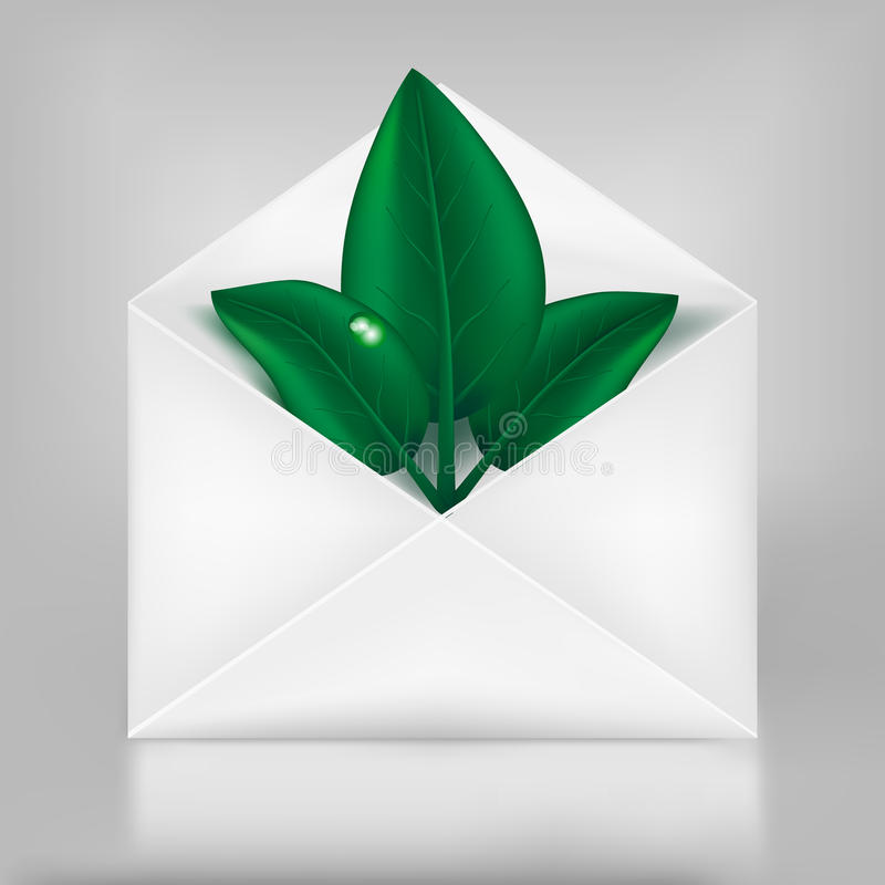 Eco concept. Green leafs in paper envelope. stock illustration
