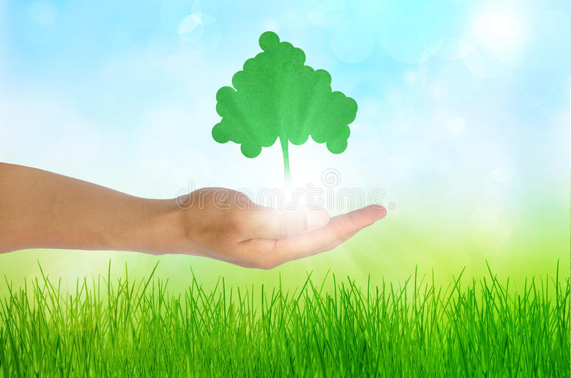 Download Eco Concept  Hand And One Tree Stock Image - Image: 20345495