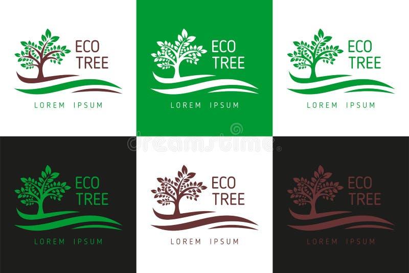 Eco drzewa logo Logo szablonu wektor dla biznesu, Drzewny logo, Drzewny logo szablonu ściąganie - Wektorowy ściąganie ilustracja wektor