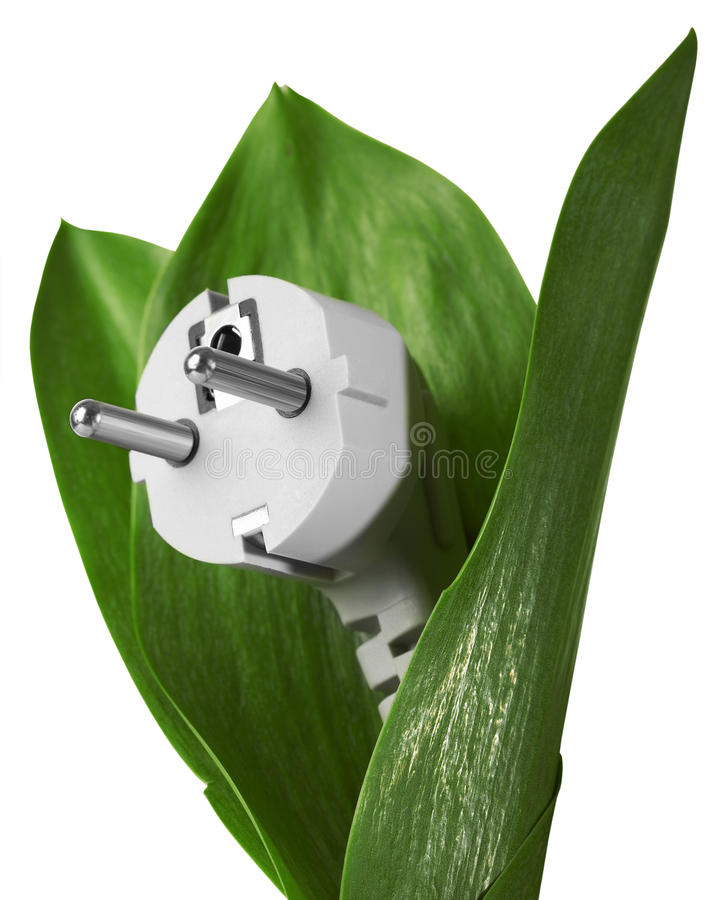 Eco energy. In a white background