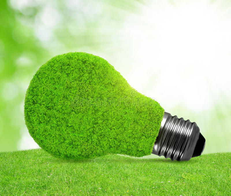 Eco energy bulb in grass royalty free stock images