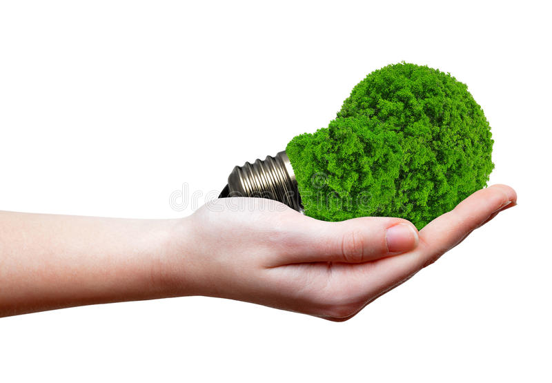 Eco energy bulb stock photo