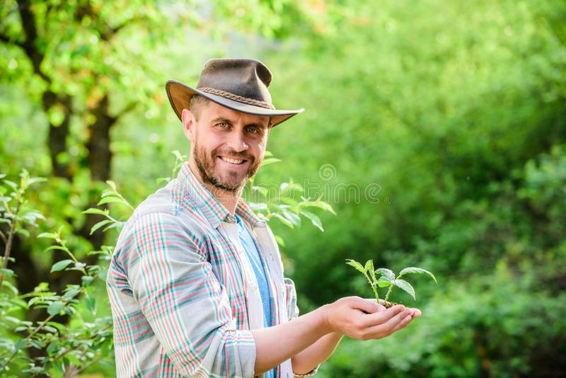 Eco farm worker. Earth day. successful farmer hold plant in ground in hands. farming and agriculture cultivation royalty free stock photos