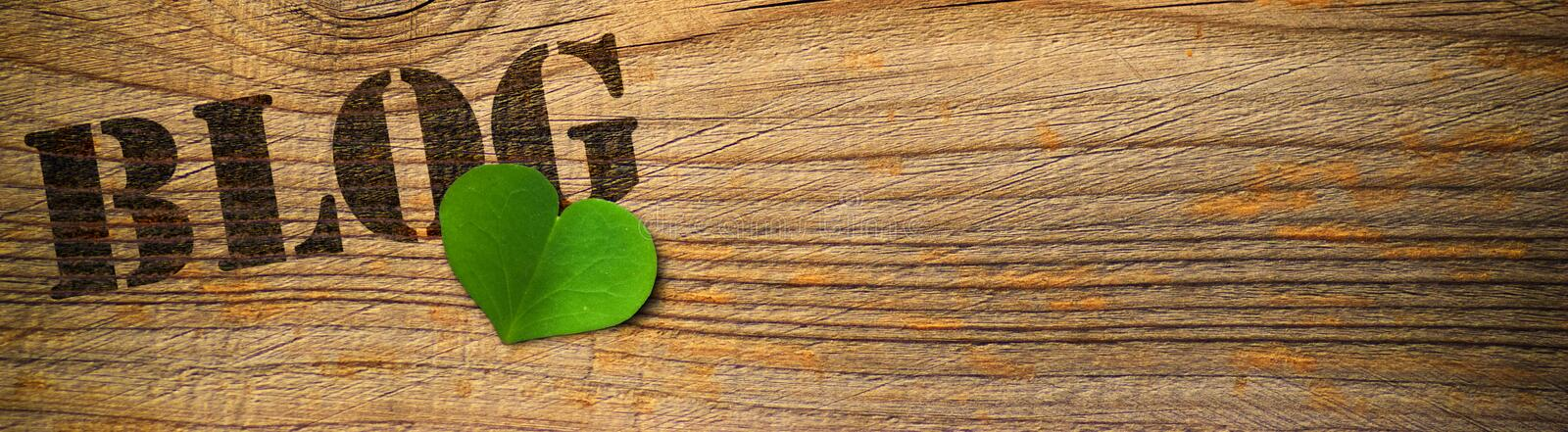 Eco friendly blog - green royalty free stock photography