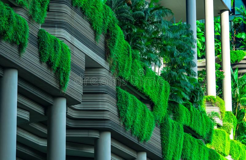 Eco friendly building with vertical garden in modern city. Green plant and tree forest and ivy on facade on sustainable building. stock photos
