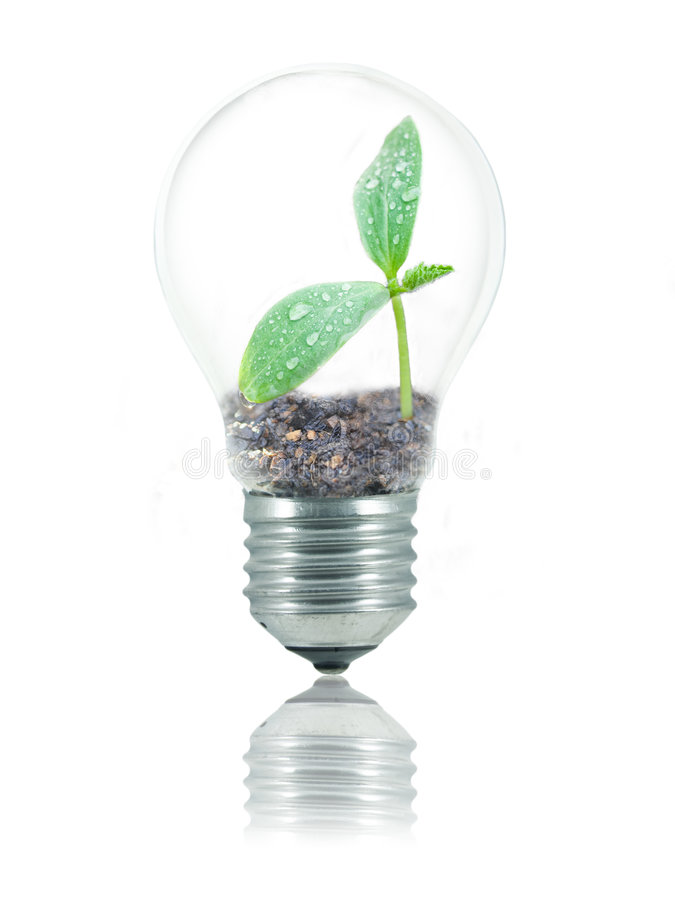 Eco friendly bulb stock photography