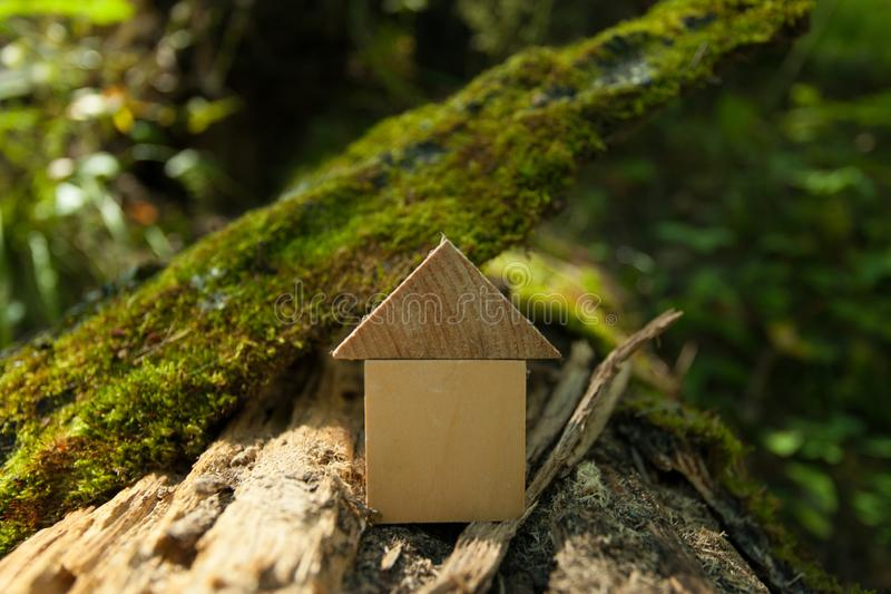Eco Friendly house concept, Environment conservation concept, Green spring background, model home outdoors stock photos