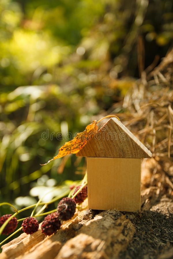 Eco Friendly house concept, Environment conservation concept, yellow fall autumn background. model home outdoors in a garden royalty free stock image
