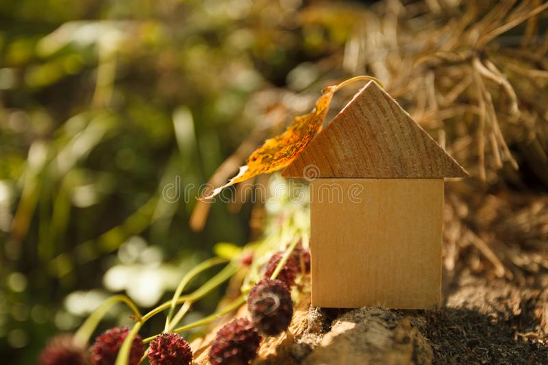 Eco Friendly house concept, Environment conservation concept, yellow fall autumn background. model home outdoors in a garden royalty free stock images