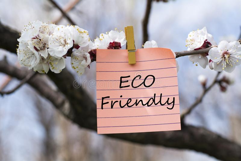 Eco friendly in memo. Pined on tree with blooms stock photo