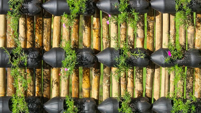 Eco friendly way of gardening. Flowering plants in a eco friendly way royalty free stock images