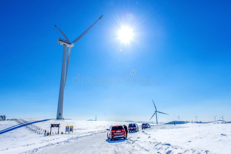 Eco gör grön universitetsområdet, den Daegwallyeong Samyang ranchen i vinter och turister med bilen i den Daegwallyeong Samyang r royaltyfri bild
