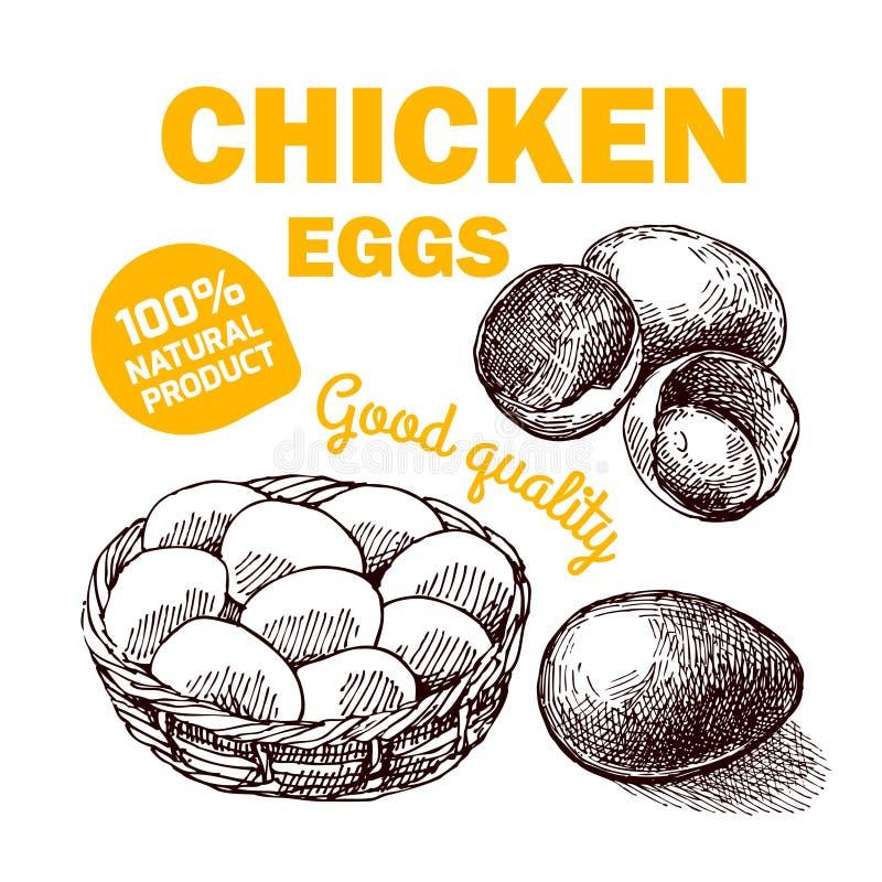 Eco gospodarstwa rolnego kurczak ilustracja wektor