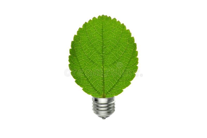 Eco gräsplanblad och ljus kula, vänligt begrepp för miljö royaltyfri bild