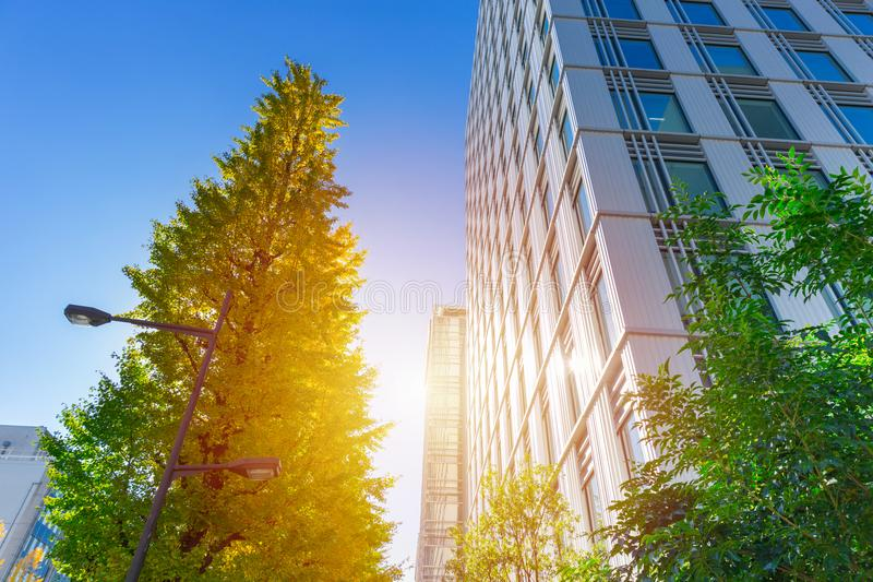 Eco green city office building outdoor. Blue sky stock photo