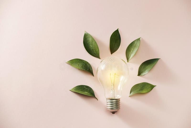 Eco green energy concept bulb, lightbulb leaves on pink background.  stock photos
