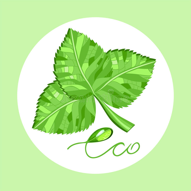 Download Eco3 stock vector. Image of environmentally, green, rain - 43051888