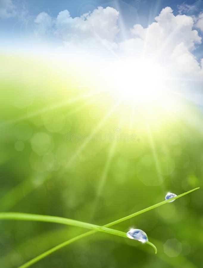 Eco Hintergrund mit Himmel, Gras, Wasser fällt lizenzfreies stockbild