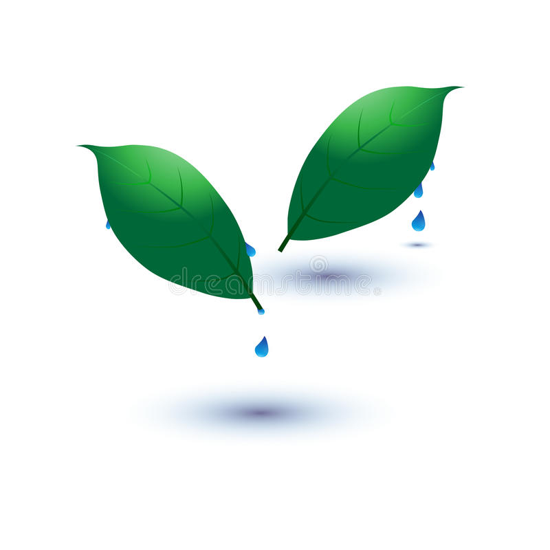 Eco icon with Green leaf with water drop. stock illustration