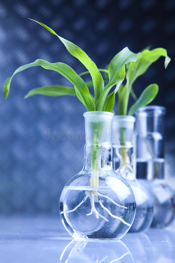Eco laboratory stock photo