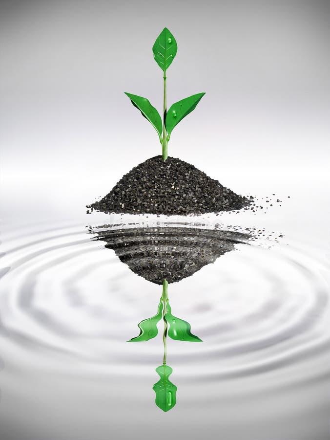Eco leaf stock image