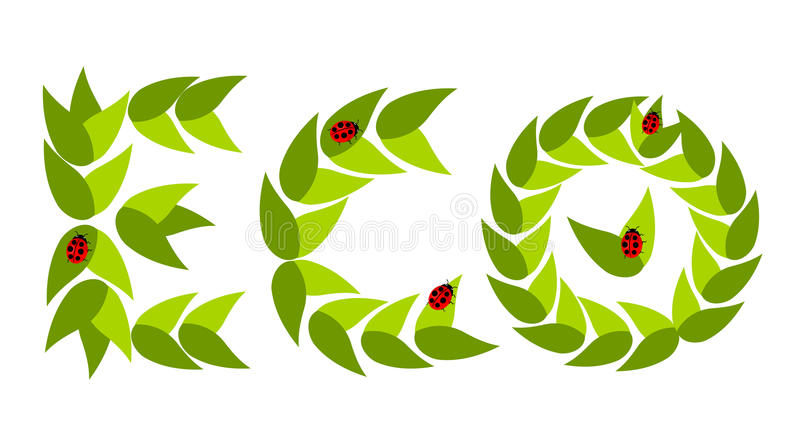 Eco leaves with ladybugs royalty free illustration