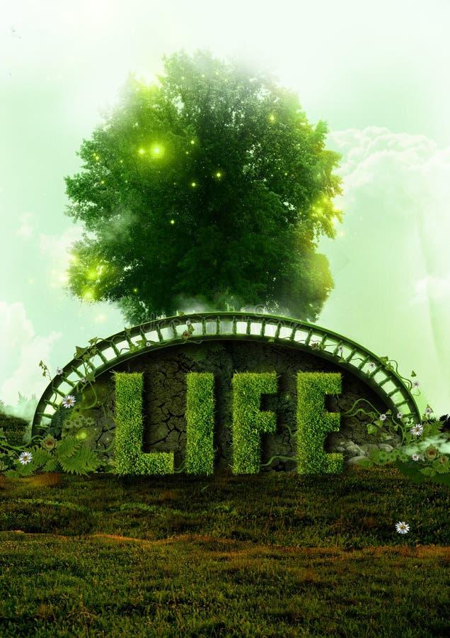 Eco Leben und Naturkonzept lizenzfreie stockfotos