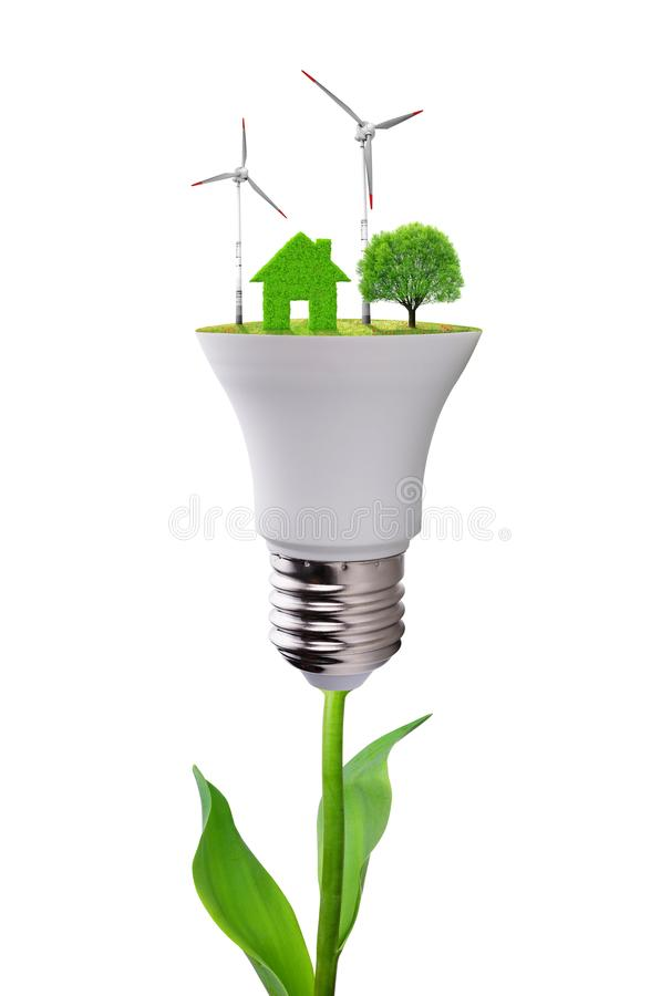 Eco LED light bulb on plant isolated on white background. Concept of green energy royalty free stock photos