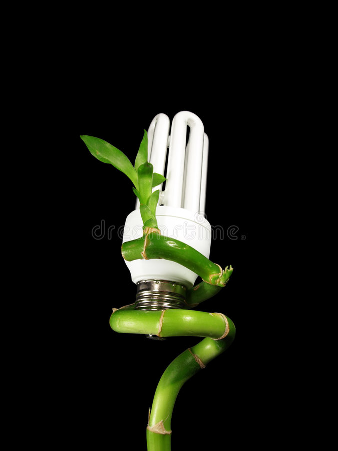 eco light bulb on plant stock photo