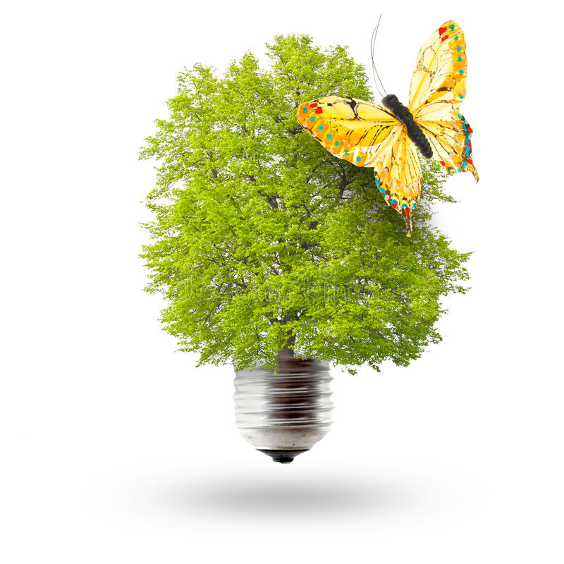 Eco lightbulb and butterfly royalty free stock photography