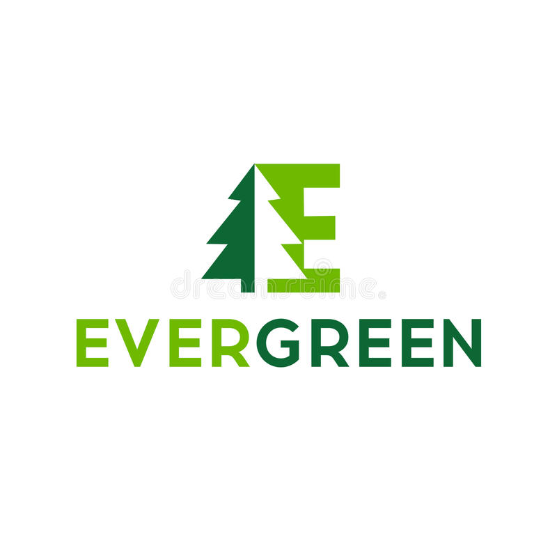 Eco logo, wiecznozielony logo, wektorowy loga szablon Drewno ikony graficznego projekta loga symbol ilustracja wektor