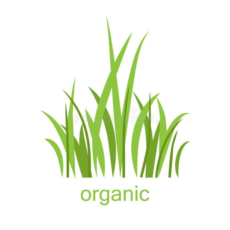 Eco logogräs royaltyfri illustrationer