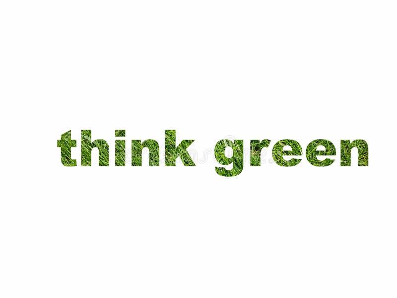 Eco myśli zieleni teksta znaka symbolu życzliwa ikona odizolowywająca na bielu ilustracji