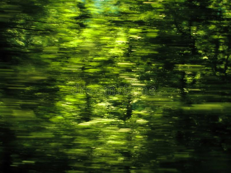 Eco natural green background royalty free stock photography