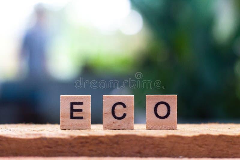 Eco ord av träkuben royaltyfria foton