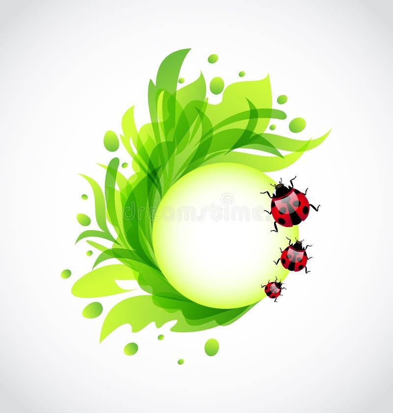 Eco transparenter mit Blumenhintergrund mit Marienkäfern stock abbildung