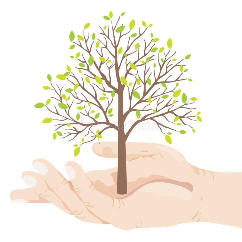 Eco Tree. A hand holding a tree stock illustration