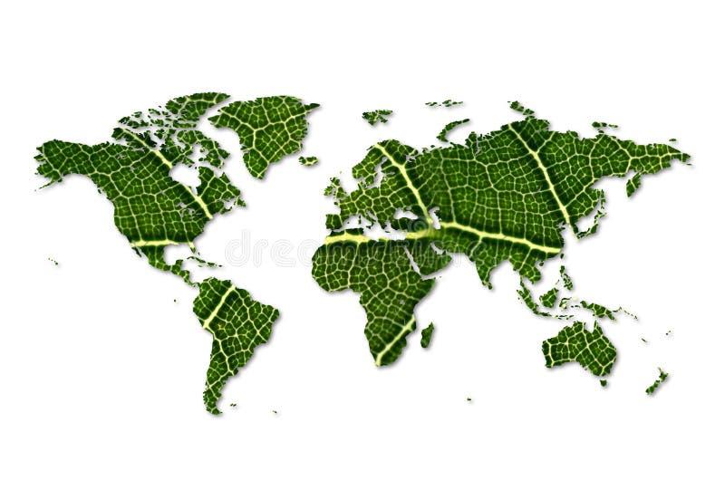 Eco världskarta som göras av grönt begrepp för miljövård för blad för sidaöversiktsgräsplan royaltyfri foto