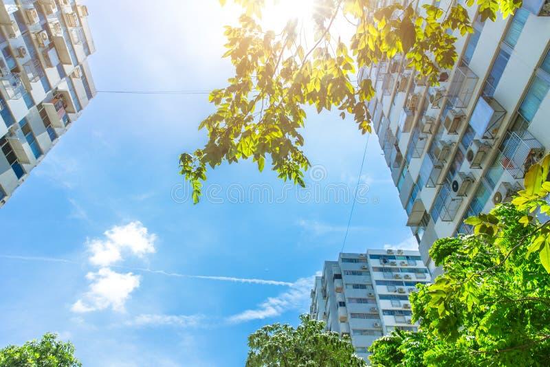 Eco verdissent le concept vivant de ville de bon environnement de la communauté photo libre de droits
