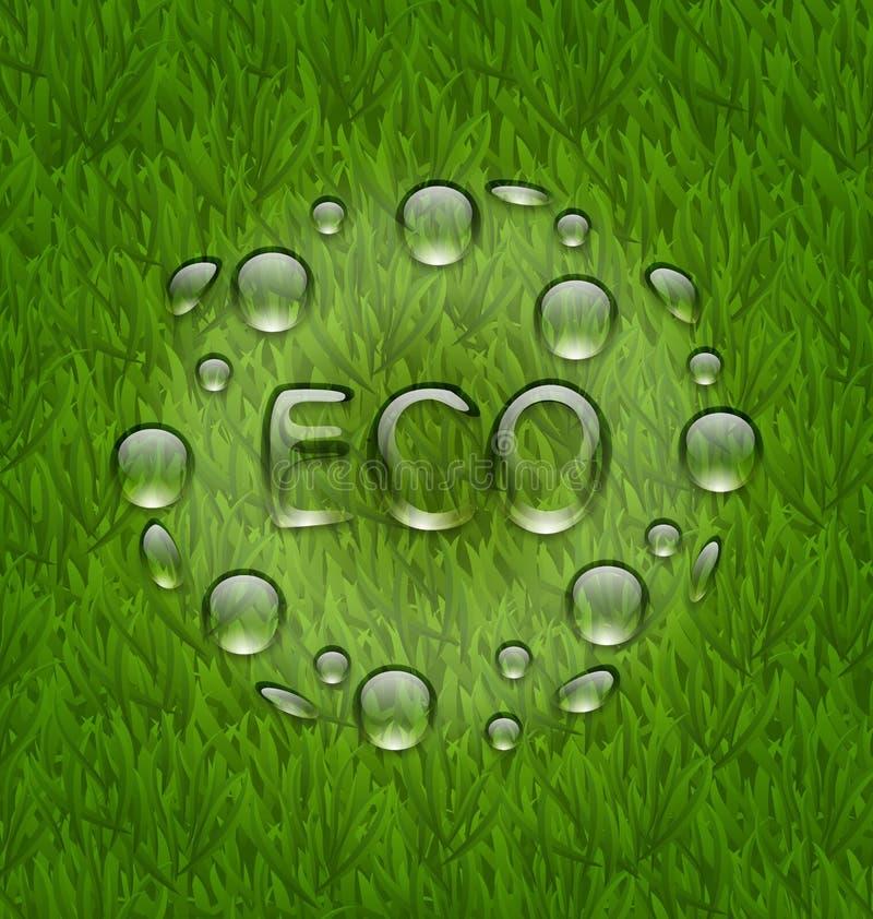 Eco vriendschappelijke achtergrond met waterdalingen op vers groen gras te vector illustratie