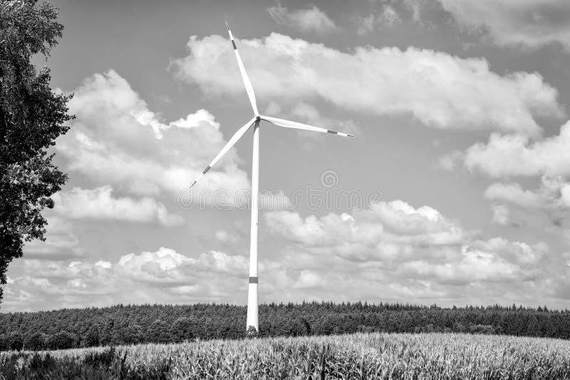 Eco władza, zielony technologii pojęcie obrazy stock