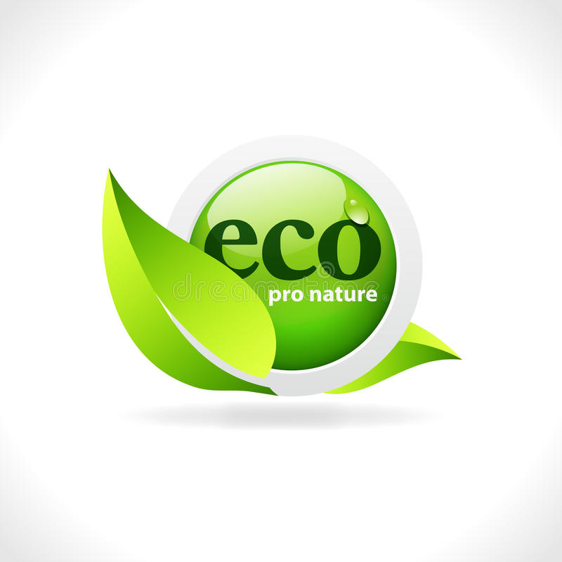 Eco web button. Green website button with the inscription Eco Pro Nature