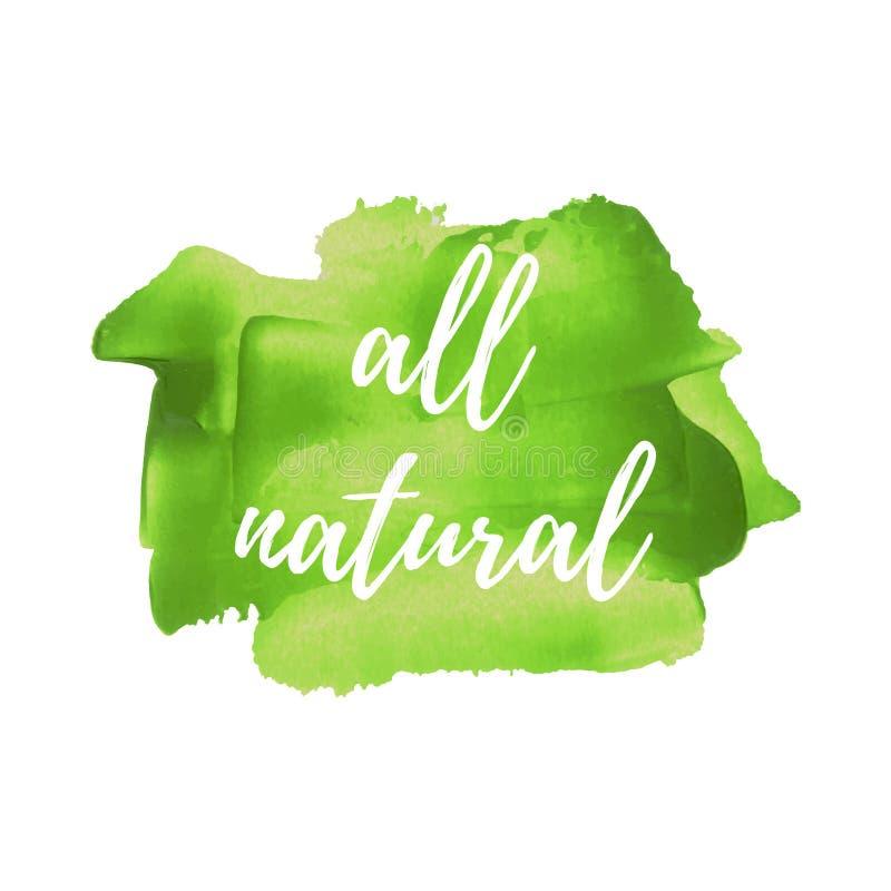 Eco Zielonego jedzenia Świeży Organicznie wektorowy słowo, tekst, ikona, symbol, plakat, logo na ręka rysującej zielonej farby tł ilustracji