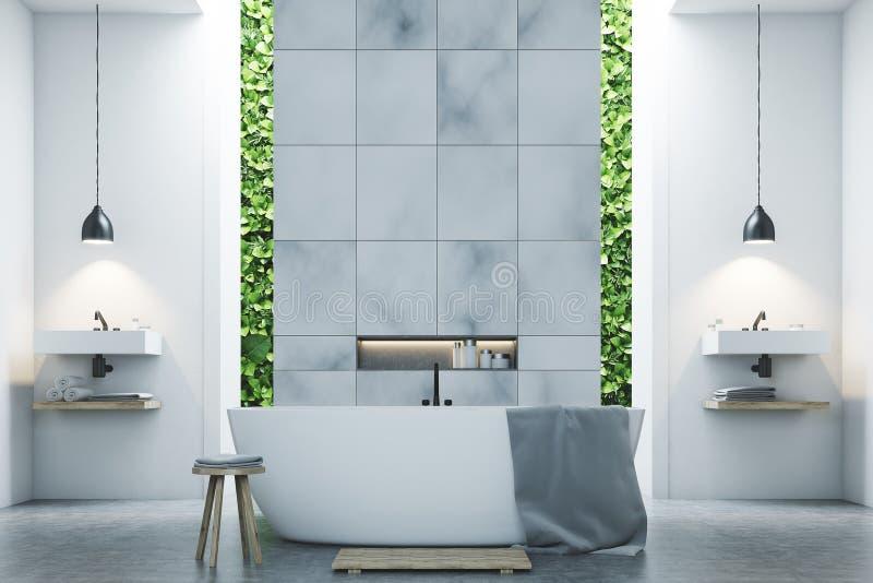 Ecobadkamers twee gootstenen, marmeren tegels stock illustratie