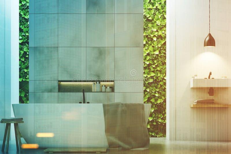 Ecobadkamers twee gootstenen marmert, sluit omhoog gestemd royalty-vrije illustratie
